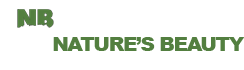 Natures Beauty Tree Service
